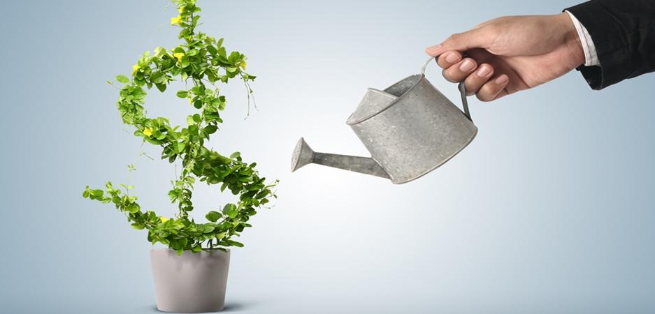 reinvestir o lucro da empresa